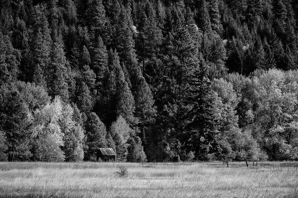 Homestead on the Forest Edge, Kittitas County, Washington, 2012