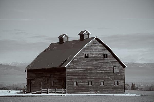 Old Barn, Manastash Road & Strande Road, Ellensburg, Washington, 2011