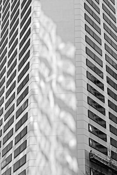 Urban Architecture No. 3, Seattle, Washington, 2008