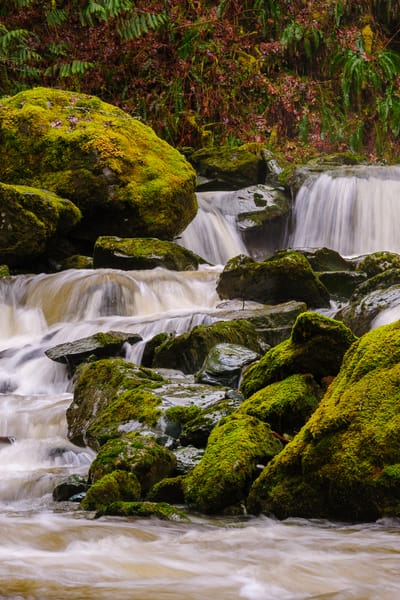 Waterfall, O'Toole Creek, Skagit County, Washington, 2017