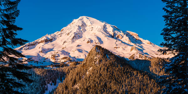 Winter Panoramic, Mount Rainier, Washington, 2017