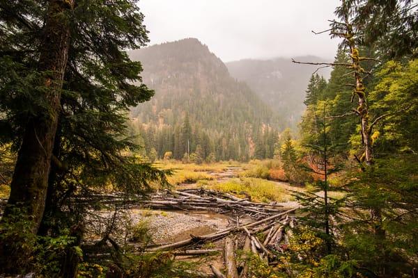 Autumn Colors on River Bend, South Fork Sauk River, Washington, 2015