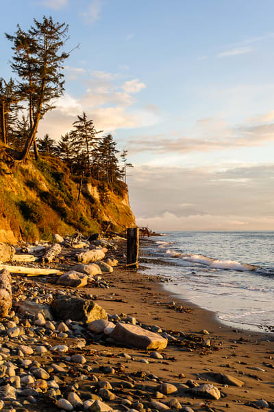 Beach, Hastie Lake Boat Launch, Whidbey island, Washington, 2016