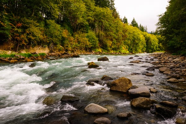Cispus River, Lewis County, Washington, 2016