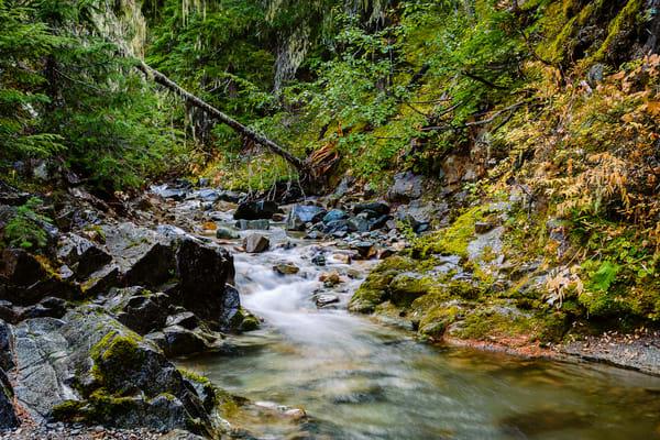Copper Creek Canyon, Washington, 2016