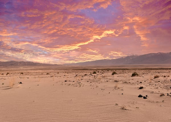 Mesquite Dunes At Sunset Photography Art | Colin Murray Photography LLC