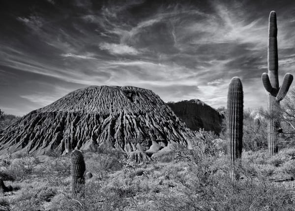 Sonoran 1035 Final Recovered Photography Art | Colin Murray Photography LLC