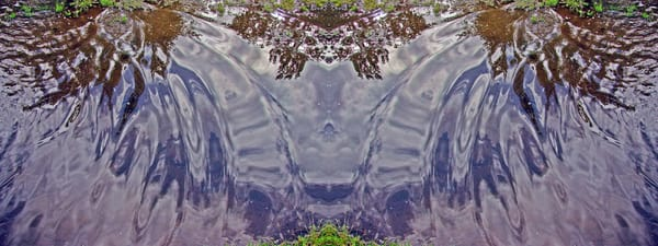 Mirror 354_Meadow Puddle Abstract