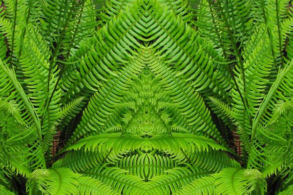 Mirror 750_The Green Man 1