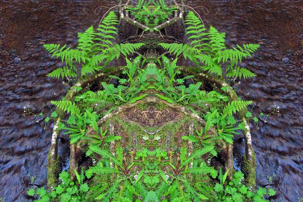Mirror 959_Creek Totem !
