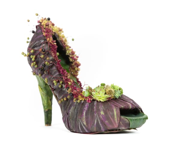 Flowering High Heel Dreams