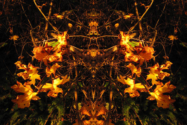 Mirror 1093_Guardian Of The Fall