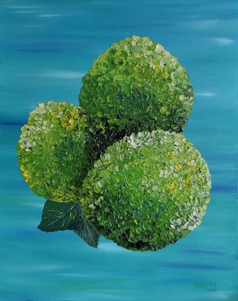 Green Hydrangea | Anna Kim Studio