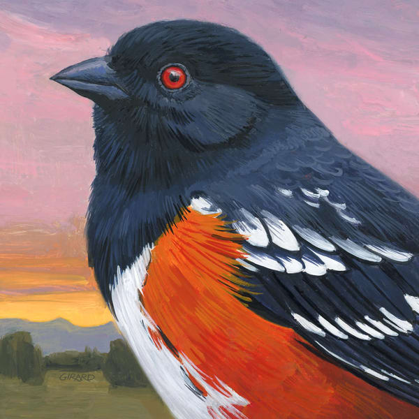 Spotted Towhee Bird Block | Studio Girard