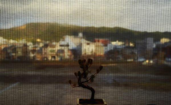 Behind The Curtain Across The River Art | Danny Johananoff