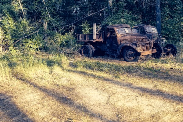 Out To Pasture Photography Art | Paul J Godin Photography