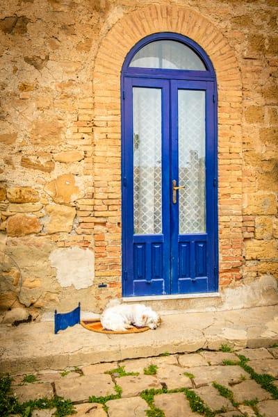 Guarding the Blue Door