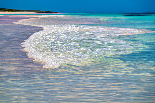 Colors Of The Caribbean Photography Art | Carol Brooks Parker Fine Art Photography