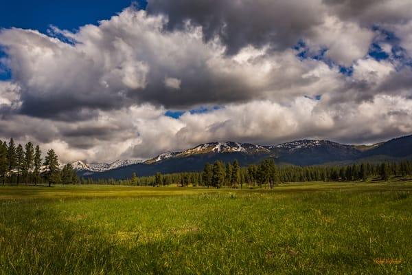 Oregon In Spring Photography Art | McKendrick Photography