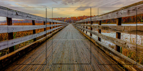 Dower Looking Forward 3 Pc 3 D Pano Photography Art | Whispering Impressions