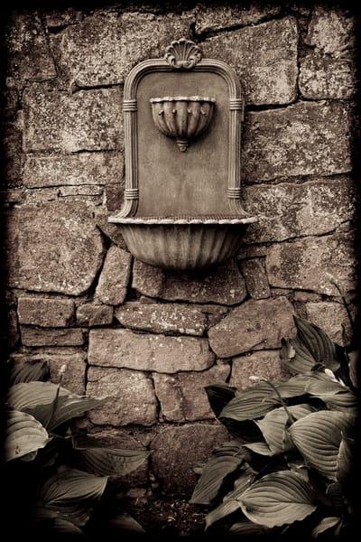 Fountain And Hostas Photography Art | David Frank Photography