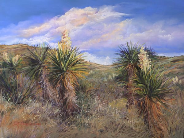 Davis Mountains Collection