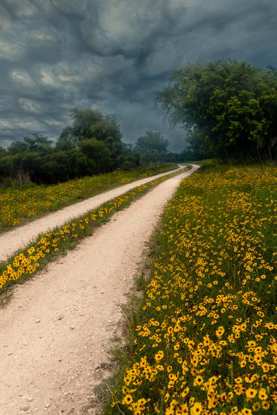 Into The Storm Photography Art   Grace Fine Art Photography by Beth Sheridan