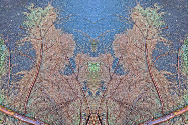 Mirror 2020_Rorschach In The Rain 1