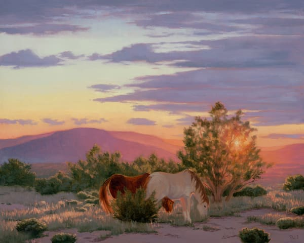 Two Mustangs At Sunset  Art | Terry Sauve Fine Art