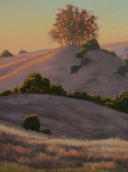 Hilltop Eucalyptus  Art | Terry Sauve Fine Art