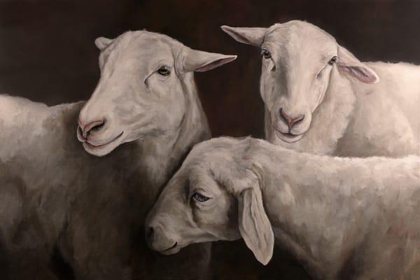 Painting of three sheep