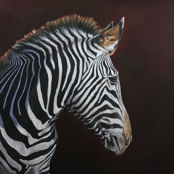 Painting of a beautiful zebra