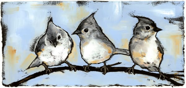 Tufted Titmouse Trio Art | Studio 100 Productions - Paula Wallace Fine Art and Illustration