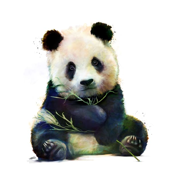 Adorable baby panda mixed media painting by Sally Barlow