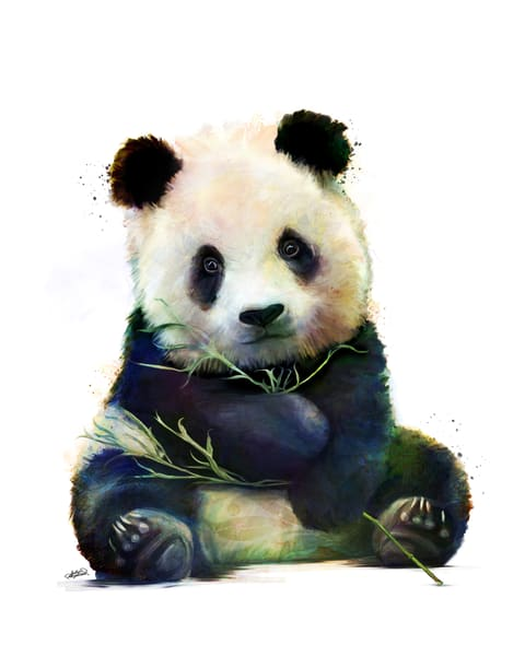 Adorable fuzzy baby panda art by Sally Barlow