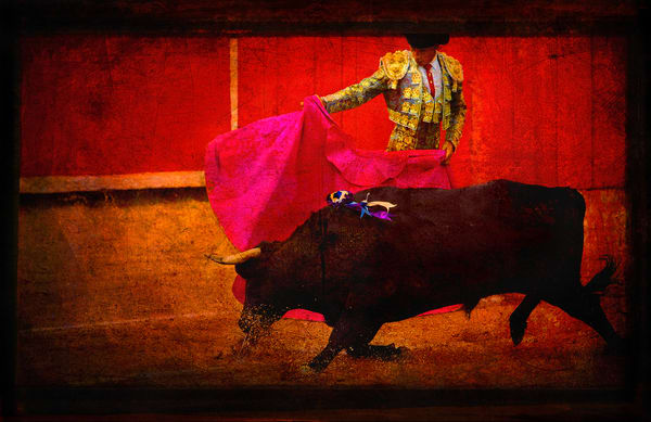 San Miguel, Bullfight, #4