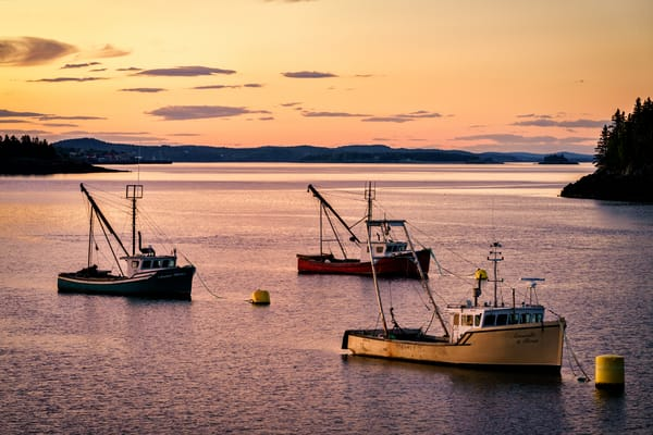 Twilight in the Harbor | Shop Photography by Rick Berk