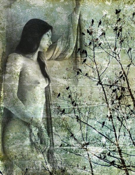 Migration Art   artalacarte