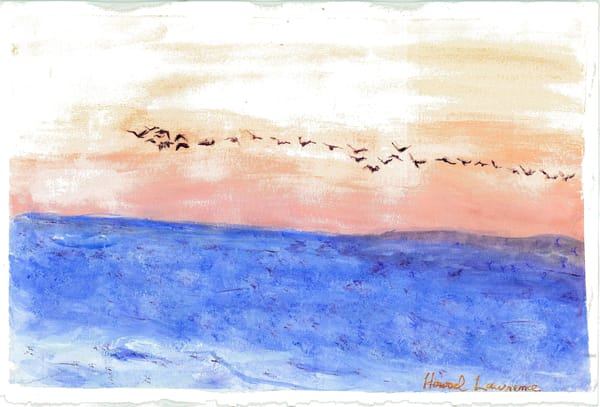 Bird Flight At Dawn Art   Howard Lawrence Fine Art