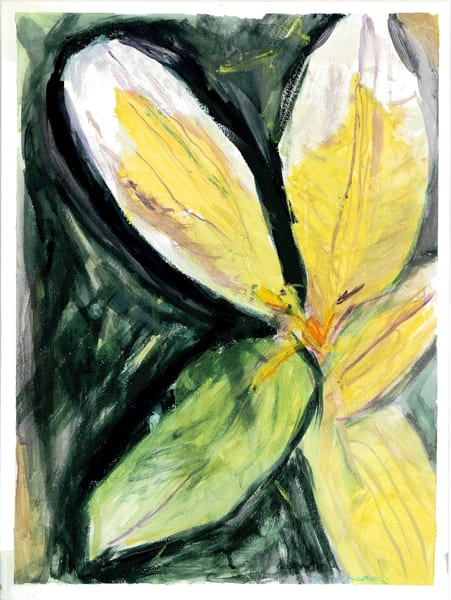 Flower From A Vine Art | Howard Lawrence Fine Art