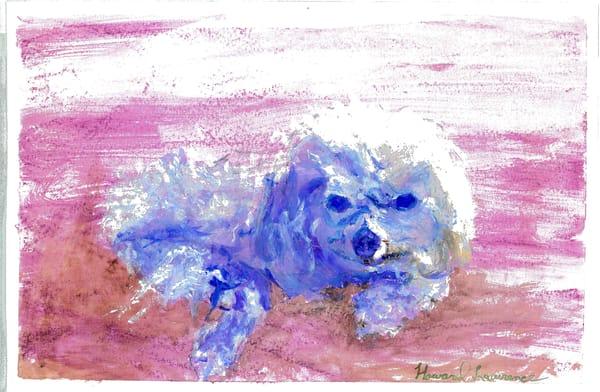 Pretty Blue Dog Art   Howard Lawrence Fine Art