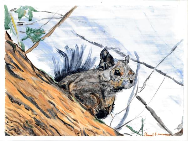 Sentinel Squirrel Art   Howard Lawrence Fine Art