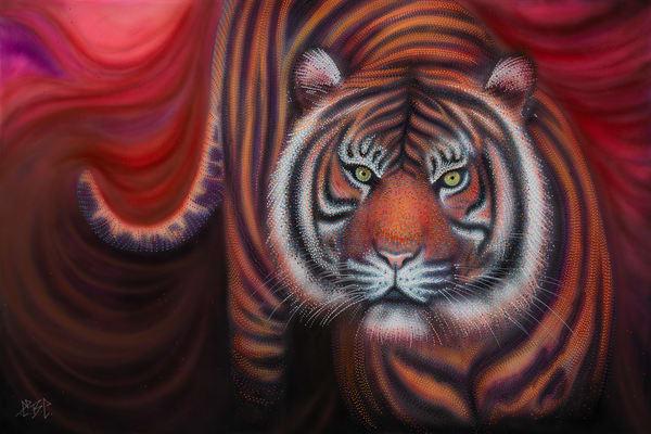 tiger, big cat, wildcat, wildlife, animal,