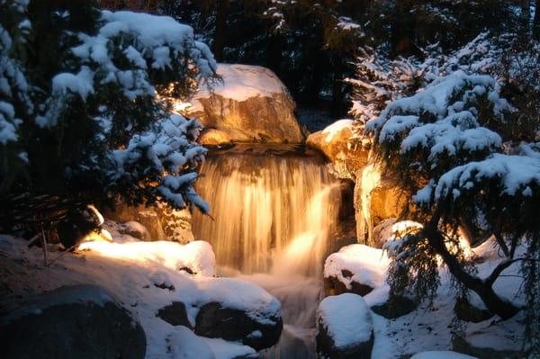 Wintertime Falls Dow Gardens