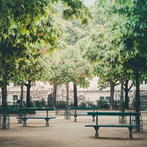 Three Benches At Place Dauphine Photography Art | AngsanaSeeds Photography