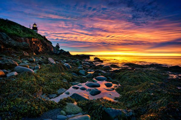 Sunrise at West Quoddy Head | Shop Photography by Rick Berk