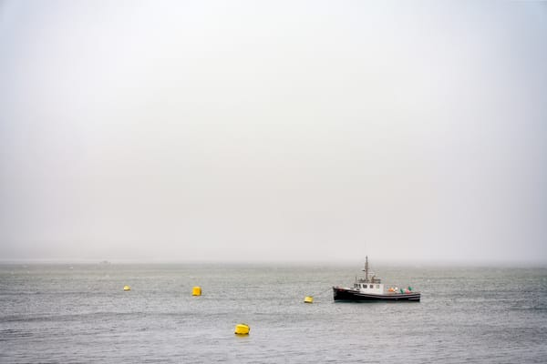 Alone in the Mist | Shop Photography by Rick Berk