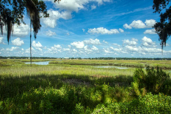 Lowcountry Afternoon Photography Art | Willard R Smith Photography