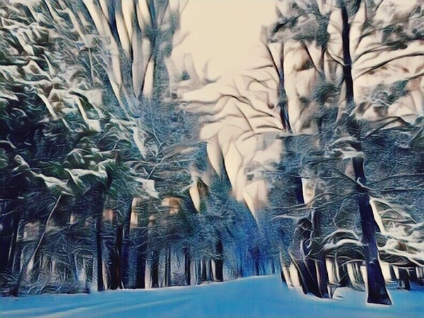 Winter Wonderland Art | Maciek Peter Kozlowski Art