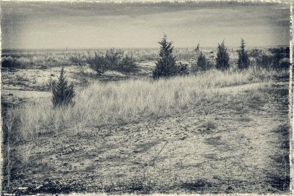 Slaughter Beach   Delaware Photography Art   David Frank Photography